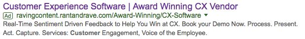 Rant and Rave ravingcontent google advertisement ROI