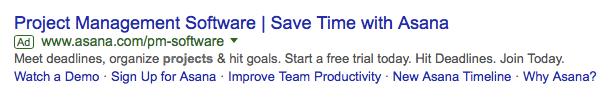 Asana Google Advertisement ROI